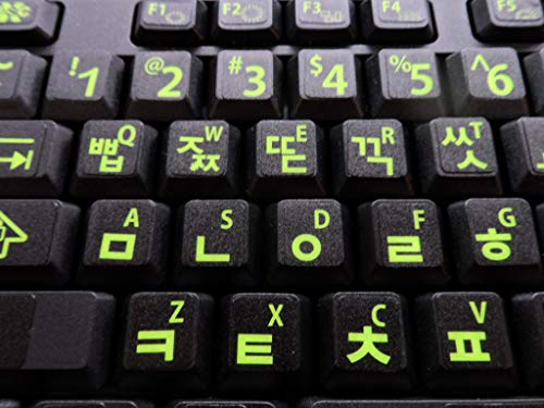 Korean Keyboard Stickers with Fluorescent Inlays. Large Symbols Will Not Wear, Smudge or Fade. Korean Conversion for All Laptop and Desktop Keyboards Also Free USB LED Light (White).