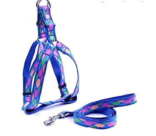 Best 4 Pets Dog Harness and Leash Blue Pretty Pattern Medium Size (Pattern Dog Harness compare prices)