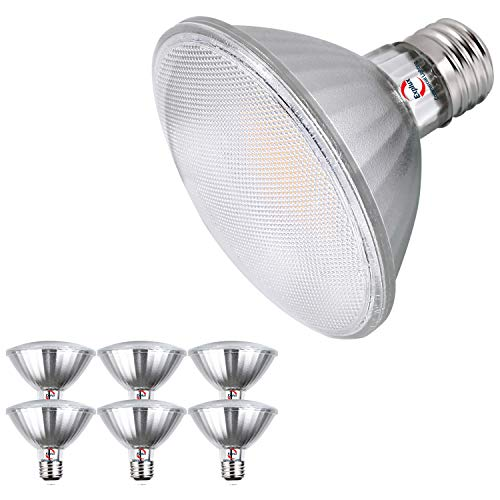 Explux Classic Full-Glass PAR30 Short Neck LED Flood Light Bulbs, Dimmable, 3000K Bright White, Indoor/Outdoor, 75W Equivalent, 6-Pack