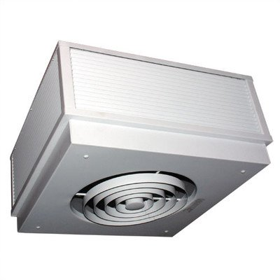 TPI P3473A1 Series 3470 Commercial Fan Forced Surface Mounted Ceiling Heater, 1 Phase, 3 Kw, 6.3 Amps by TPI