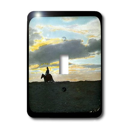 3dRose LLC lsp_16131_1 Indian Rider in Sunset Horizon in The American Southwest - Single Toggle Switch by 3dRose