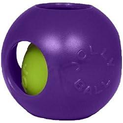 Jolly Pets 6-Inch Teaser Ball, Purple