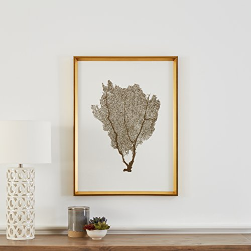 "Stone & Beam Modern Gold Foil Sea Fan Print I, Gold Frame, 24"" x 30"""