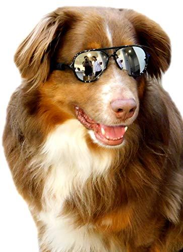 G010 Dog pets Aviator Turbo Sunglasses glasses goggles w retainer strap Medium breeds 20-60lbs (Black-mirror, uv400)