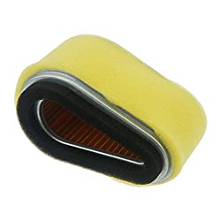 Euros pack of 2 Replace 100188 Air Filter For Kawa