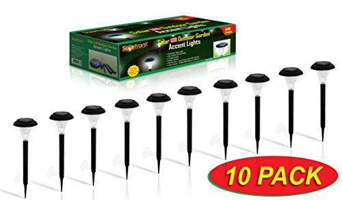 Amazon.com : 10 Pack Solar Powered LED Accent Outdoor Garden Path Lights. Ideal Lighting for Path Patio Yard Deck Driveway and Garden : Garden & Outdoor