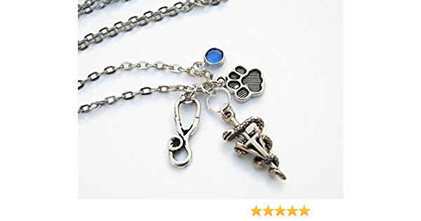 Veterinarian Necklace Silver Caduceus Charm Personalized present men women him her coworker animal doctor Gift for Vet Assistant Jewelry