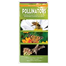 Pollinators: Folding Pocket Guides to Bees, Butterflies & Moths and Bats