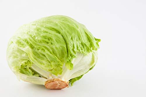 (Ferry-Morse Seed Company No.118 Lettuce Great Lakes Crisphead Vegetable Plant)