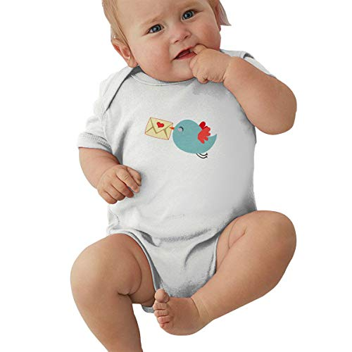 Unisex Baby Short Sleeve Bodysuits Mail Carrier Bird Funny Summer Boys Girls Onesies White