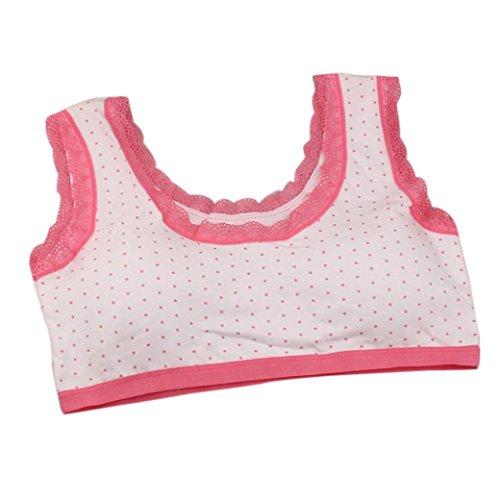 89bc7a0457 Lovely Children Girls Lace Polka Dot Underwear Bra Vest Puberty  Underclothes Sport Undies 10-14Y