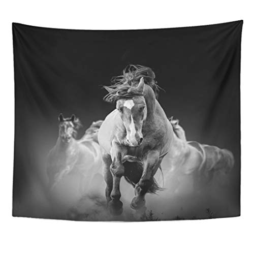 (Emvency Tapestry Run Black Mustang Wild Horses Running in The Dark Dust Animal Movement Motion Home Decor Wall Hanging for Living Room Bedroom Dorm 60x80 Inches)