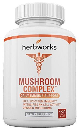 - Mushroom Complex w/Antiviral Herbs - Full Spectrum Immunity - 120 V-Capsules