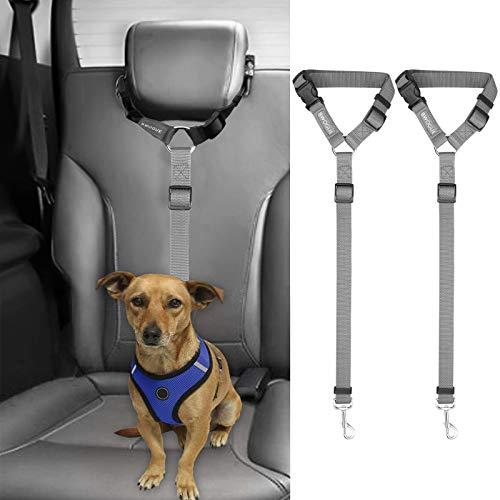 2 correas cinturon de seguridad perros auto gris