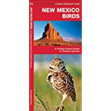 New Mexico Birds: A Folding Pocket Guide to Familiar Species (Pocket Naturalist Guide Series)