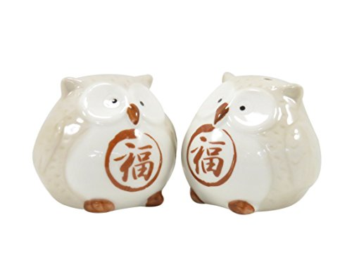 Cute Owl Salt and Pepper Shakers 2 1/4