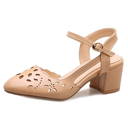 SJJH Casaul Sandals with Chunky Heel and Hollowed-Out Marry Jane Sandals Apricot Zehkz