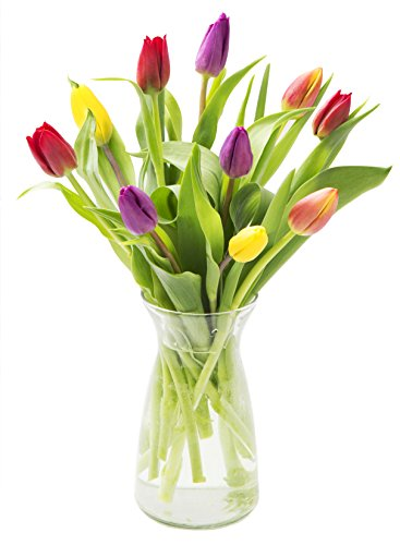 Assorted Tulip Bouquet of Red, Orange, Purple & Yellow Tulips from Holland (10 Stems) with Vase - by KaBloom