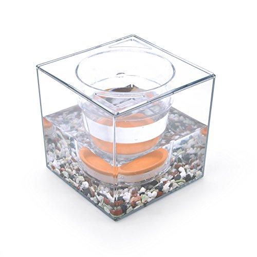flower-pot-aquariumtransparent-self-watering-mini-plant-pot-fish-tankbeautiful-diy-home-office-desk-