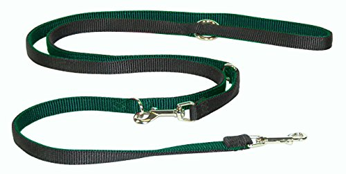 Hamilton Wide Double Thick Two Toned Nylon European Lead, 5/
