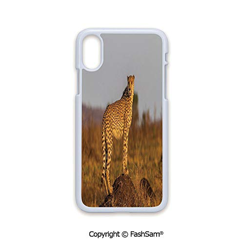 Plastic Rigid Mobile Phone case Compatible with iPhone X Black Edge African Wild Animal Cheetah Standing on Termite Mound Savannah Nature View Decorative 2D Print Hard Plastic Phone Case