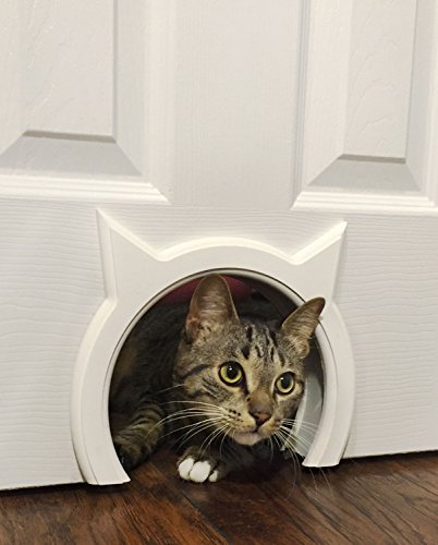 The Kitty Pass Interior Cat Door Hidden Litter Box Pet Door for cats up to 21 - Frame Door Pet Decorative