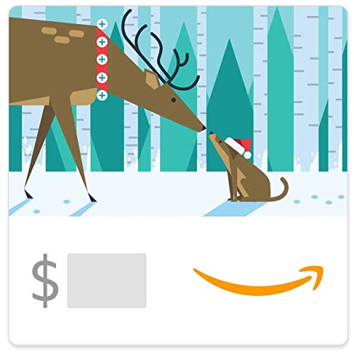Amazon eGift Card - Holiday Connection