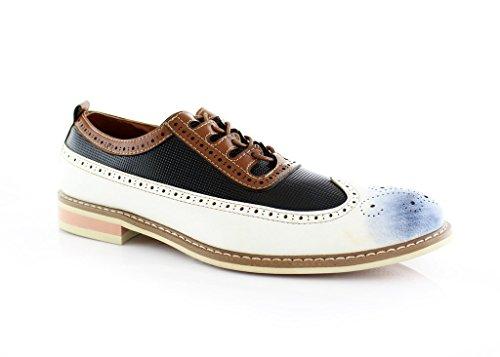 Ferro Aldo Josh MFA19278 Men's Dress Shoes Two Tone Brogue Original Perforation Details (9 U.S, White)