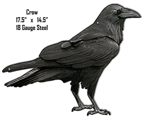 Garage Art Signs Crow Laser Animal Silhouette Metal Sign 14.5X 17.5 (Crow Sign)