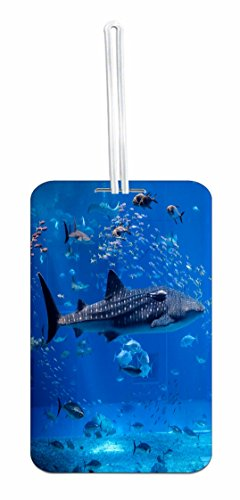 Sea Shark Custom Identifier Tag for School Bag/Backpack by Rosie Parker Inc. (Image #2)