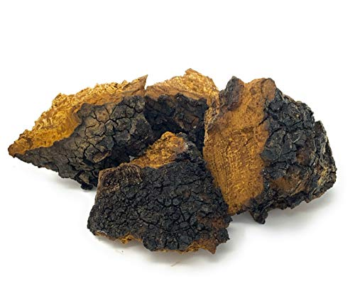 Premium Canadian Chaga Chunks 4oz