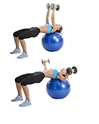 Exercise Ball Workout Poster NOW LAMINATED - Total Body Workout -Fitness Ball Exercises - Body Toning, Sculpting - Home/Gym Workout - Core Training for Abs, Legs, and Butt - Rehabilitation 19\