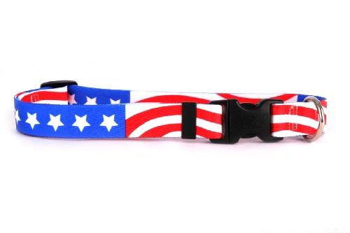 Yellow Dog Design Americana Dog Collar Fits Neck 14 to 20