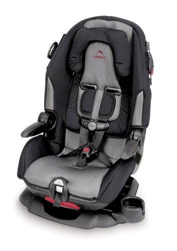 Amazon.com : Cosco Summit High Back Booster Car Seat (Discontinued ...