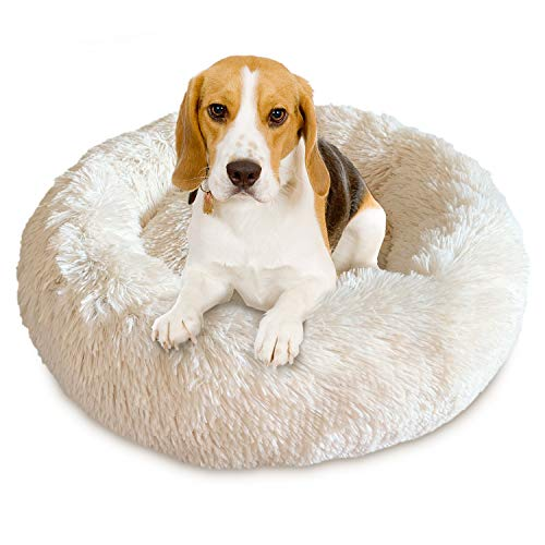 Docatgo Pet Bed, Super Soft Dog Bed, Shag Faux Fur Bed Cushion for Cats -