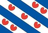 DIPLOMAT-FLAGS Friesland Flag | landscape flag | 0.06m² | 0.65sqft | 20x30cm | 8x12in for Car Flag Poles Review