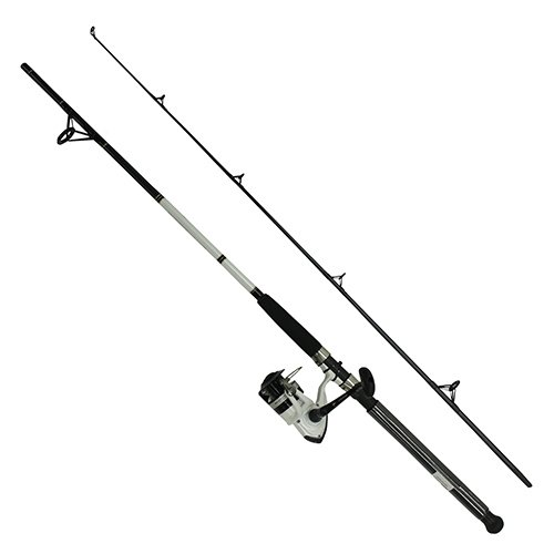 Daiwa DWB40-B/F702M D-Wave Saltwater Spinning Combo, 1 Bearing, 7' Length, 2Piece Rod, Medium Power, Fiberglass Blank Material ()