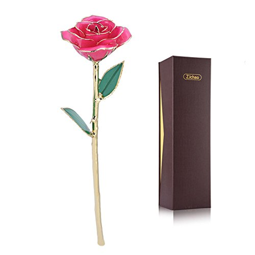 ZJchao Long Stem 24K Gold Dipped Rose Flower Best Gift for Anniversary Birthday, Pink