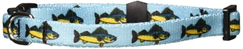 Yellow Dog Design Walleye Dog Collar-Size X-Small-3/8 inch Wide and fits Neck Sizes 8 to 12 inches