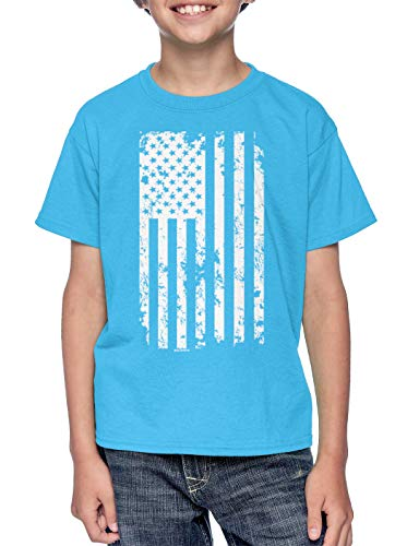 - HAASE UNLIMITED White American Flag - Torn USA Youth T-Shirt (Light Blue, Large)