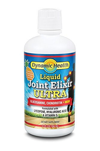 (Dynamic Health Liquid Joint Elixir with MSM Supplement, Pineapple and Mango, 32)