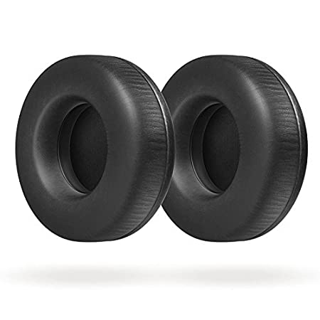 Amazon.com: Philips A5Pro/27 A5PRO Professional DJ Headphones designed with Armin Van Buuren, Black: Home Audio & Theater