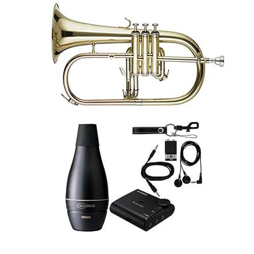 Band Directors Choice Bb student Flugelhorn Pack in Lacquer