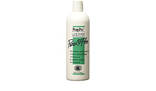 Pure Pet Flea Shampoo by Pure Pet: Amazon.es: Hogar