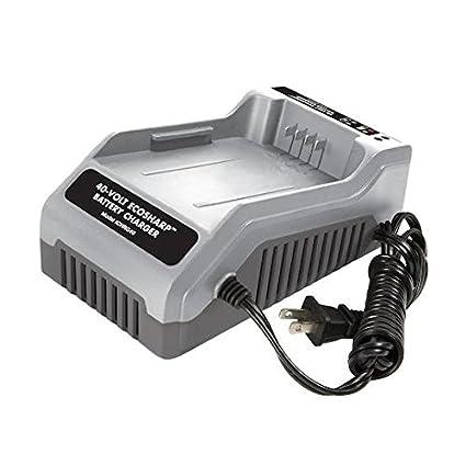 Amazon.com: Snow Joe - Cargador de batería de iones de litio ...