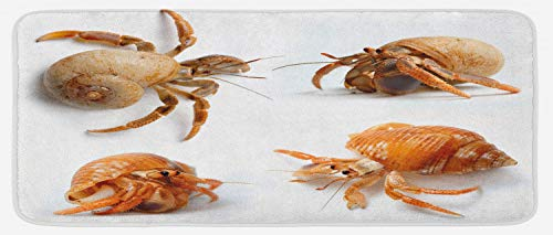 (Ambesonne Crabs Kitchen Mat, Sea Animals Theme Hermit Crabs Pattern from Caribbean Seascape Digital Print, Plush Decorative Kithcen Mat with Non Slip Backing, 47 W X 19 L Inches, Marigold and White)