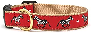 product image for Up Country Zebra Dog Collar - Medium (Narrow)