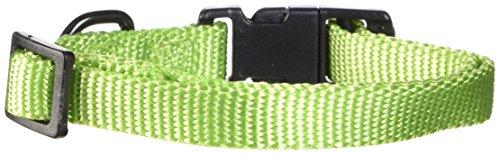 Hamilton Adjustable Nylon Dog Collar - Fae 7 Dog Collar