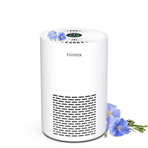 HIMOX Small Air Purifier for Bedroom, Quiet Mini Portable Desktop USB Room Air Purifiers for Home with True HEPA Filter…