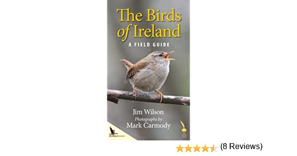 Amazon birds of ireland a field guide ebook jim wilson mark amazon birds of ireland a field guide ebook jim wilson mark carmody kindle store fandeluxe Images